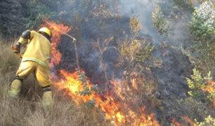 Incendios forestales arrasan con pastos naturales y cultivos agrícolas en Áncash
