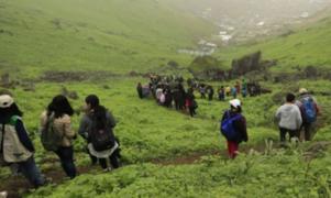 Denunciarán a quienes promuevan visitas a Lomas de VMT durante emergencia sanitaria