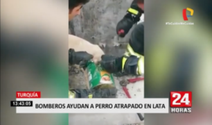 Turquía: bomberos ayudan a perro atascado en lata