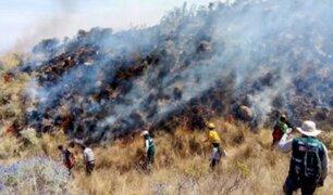 Arequipa perdió más de 2 mil hectáreas de pastizales y arbustos por incendios forestales