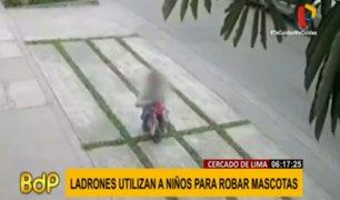 Cercado de Lima: ni mascotas de los vecinos se libran de los robos en Urb. La Luz