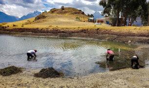 Áncash: autoridades y pobladores realizan jornada de limpieza en la laguna Wilcacocha