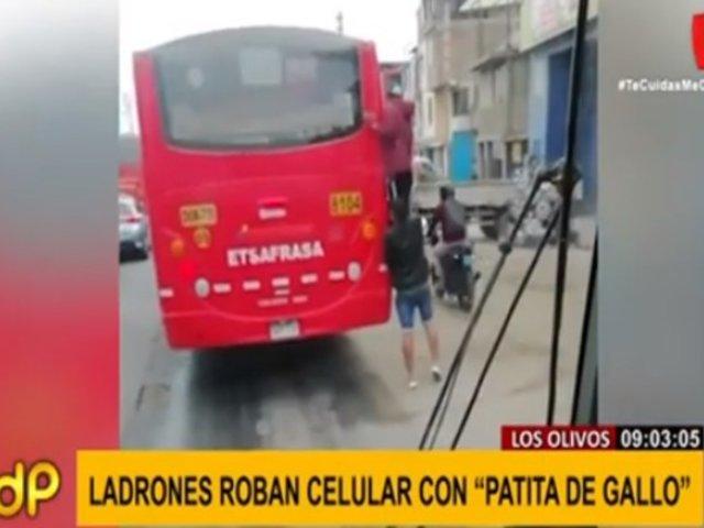 Los Olivos: ladrones robaron celular a pasajera haciendo 'patita de gallo'