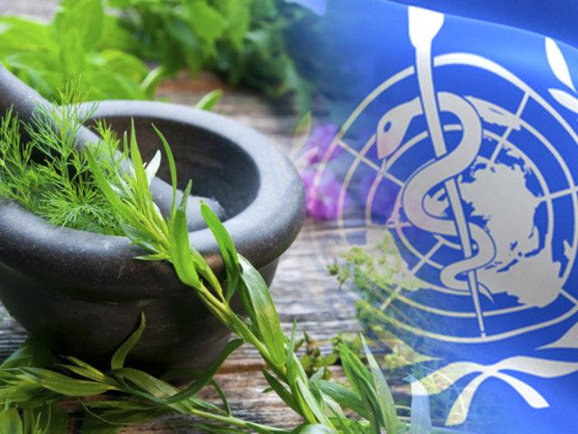 La OMS prueba plantas medicinales como receta contra el COVID-19