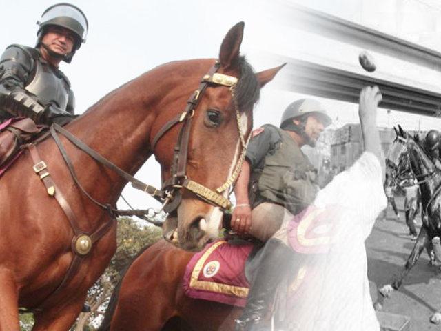 Caballos de la PNP ya no serán usados en manifestaciones