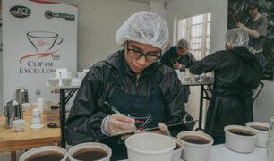 Taza de Excelencia Perú 2020: productores de café participan en importante competencia