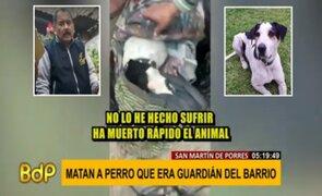 Sujeto que asesinó a puñaladas a perro guardián sigue libre