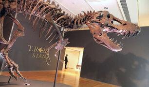 Esqueleto de T-Rex es subastado por más de 30 millones de dólares