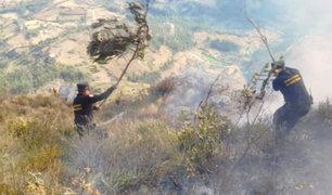 Marcahuamachuco: controlan incendio forestal que amenazaba complejo arqueológico