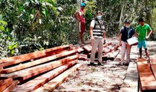 PNP incautan 6,000 mil pies tablares de madera de origen ilegal en Yurimaguas