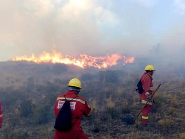 Se incrementan incendios forestales en Madre de Dios