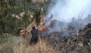 Dos incendios forestales golpean a Áncash en las últimas 24 horas
