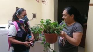 Lambayeque: ciudadanos no dejan ingresar a sus viviendas al personal de salud para prevenir dengue