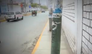 Santa Anita: postes en medio de vereda dificultan el tránsito de los peatones