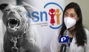 Perro Pitbull desfigura a niña de seis años en La Victoria