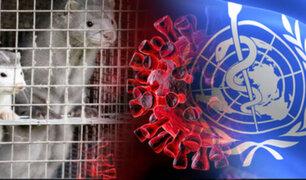 OMS notifica doce casos de una nueva mutación de COVID-19