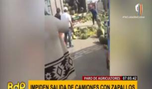 Panamericana Norte: agricultores en paro arrojan zapallos para impedir salida de camiones