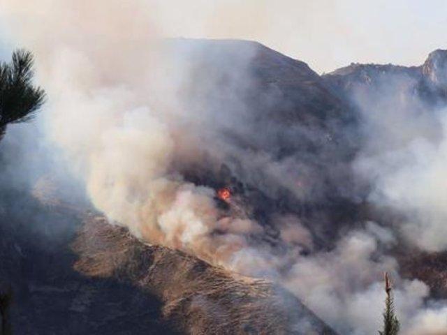 Ayacucho: cuatro bomberos resultaron heridos pero lograron controlar incendio forestal