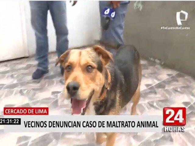 Cercado de Lima: hombre es acusado de maltratar constantemente a su perro