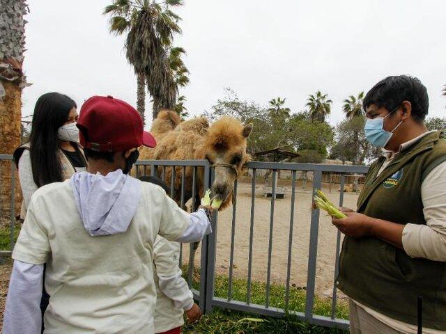 Municipalidad de Lima cumple deseo a menor de 15 años de conocer el Parque de las Leyendas