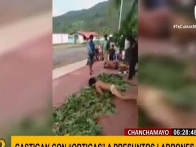 Chanchamayo: presuntos ladrones fueron obligados a rodar sin ropa por cama de ortigas