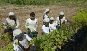 Ley de Promoción Agraria: MTPE impulsará derogación de condiciones laborales