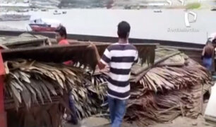 Iquitos: Boras reconstruyen maloca que fue arrasada por fuertes vientos