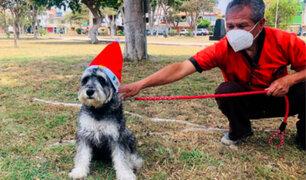 Navidad canina: organizan colorido concurso de disfraces navideños