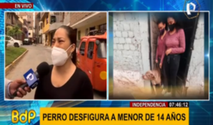 Independencia: niña pierde parte del rostro tras ser atacada por perro mastín