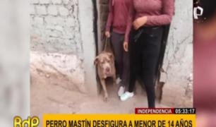 Independencia: dueños del can que desfiguró a niña no asumen responsabilidad, señala madre