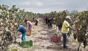 Pleno del Congreso debate nueva Ley General de Régimen Agrario