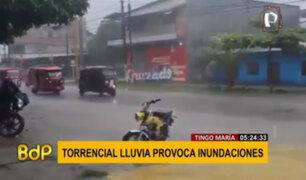 Tingo María: Lluvias torrenciales provoca inundaciones