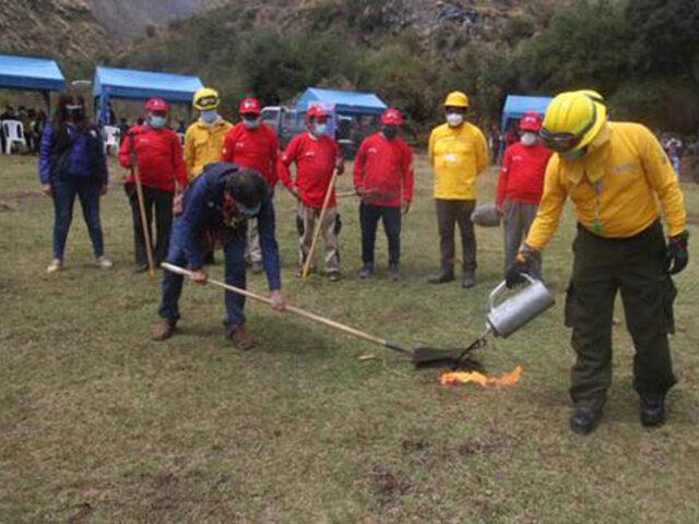 Cusco: inician plantación de un millón de árboles a lo largo del Valle Sagrado de los Incas