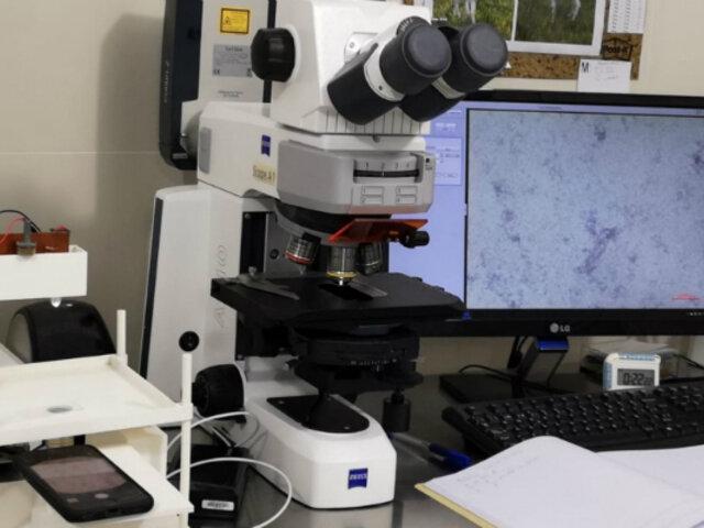 Covid-19: Google premia proyecto peruano sobre prueba rápida para diagnóstico
