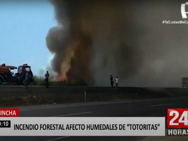 Chincha: incendio forestal llegó y afectó humedales de Totoritas