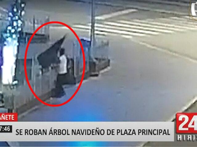 Cañete: sujeto se llevó árbol de navidad que decoraba Plaza de Armas