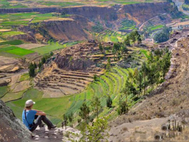 Arequipa: hasta el 31 de enero amplían ingreso libre al valle del Colca