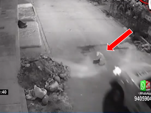 El Agustino: municipalidad separó del cargo a sereno que atropelló y mató a perro