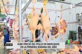 Precio del pollo registra aumento en diversos mercados de la capital