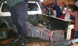 Hallan muerta a cantante folclórica reportada como desaparecida