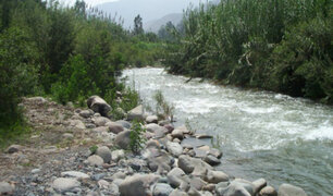 Policía Nacional, FFAA y serenos vigilan ribera del río Lurín para evitar presencia de bañistas