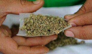 PNP de Huánuco incautó más de 30 kilos de marihuana e intervino a dos sujetos