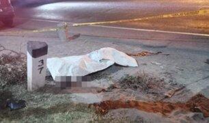 Arequipa: adulto mayor y su menor hija mueren tras ser atropellados