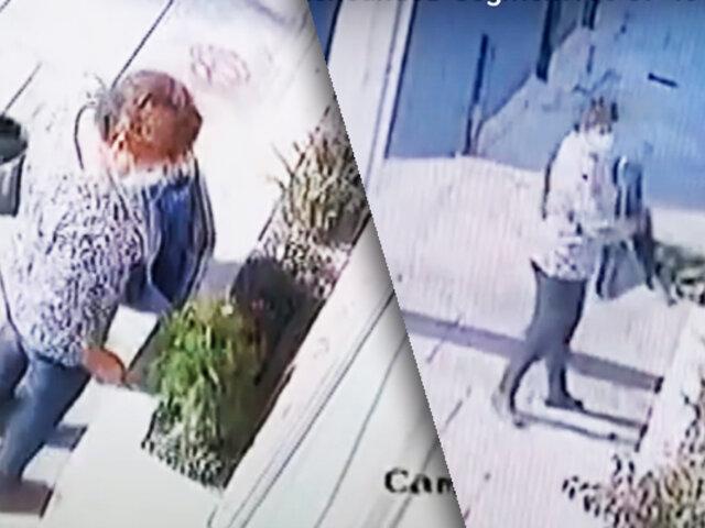 Arequipa: mujer es captada robando varias plantas de una vivienda