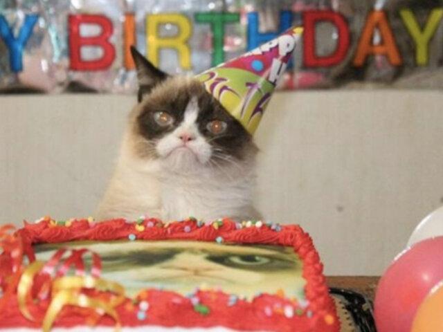 Celebran cumpleaños de gato y todos acaban contagiados con covid-19