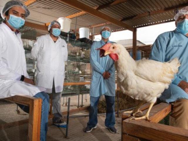 Vacuna peruana contra covid-19: Laboratorio Farvet desiste del desarrollo de dosis intranasal