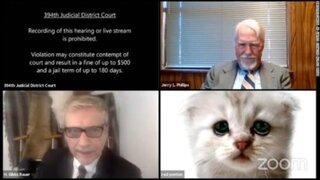 """""""No soy un gato"""": abogado apareció con filtro de Zoom en una audiencia virtual"""