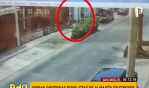 San Miguel: ladrones roban costosas bicicletas en sótano de edificio