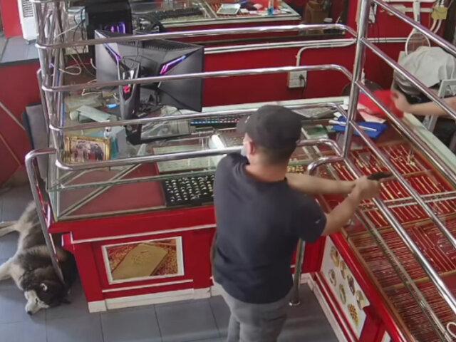Tailandia: dueño de joyería simula asalto y esta fue la reacción de su perro guardián
