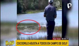 Cocodrilo asusta a jugadores en partido de golf del PGA Tour
